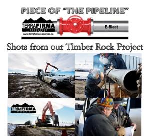 TF Timber Rock Pics 1 E-Blast