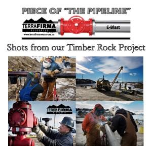 TF Timber Rock Pics 2 E-Blast